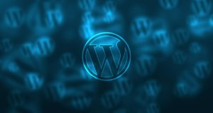 WordPress Support vom SEO Freelancer