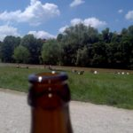 SEO Freelancer at work an der Isar