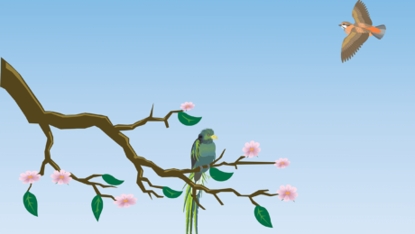 Den Microblogging Dienst Twitter nutzen - Kunden gewinnen