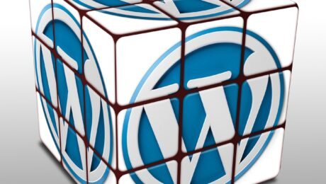 Probleme mit Plugin Update auf WordPress